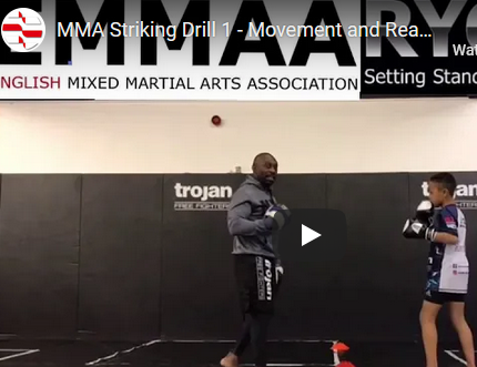 Striking Drill 1 – Movement and Reaction